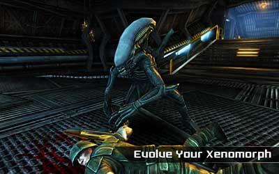 AVP-Evolution-2